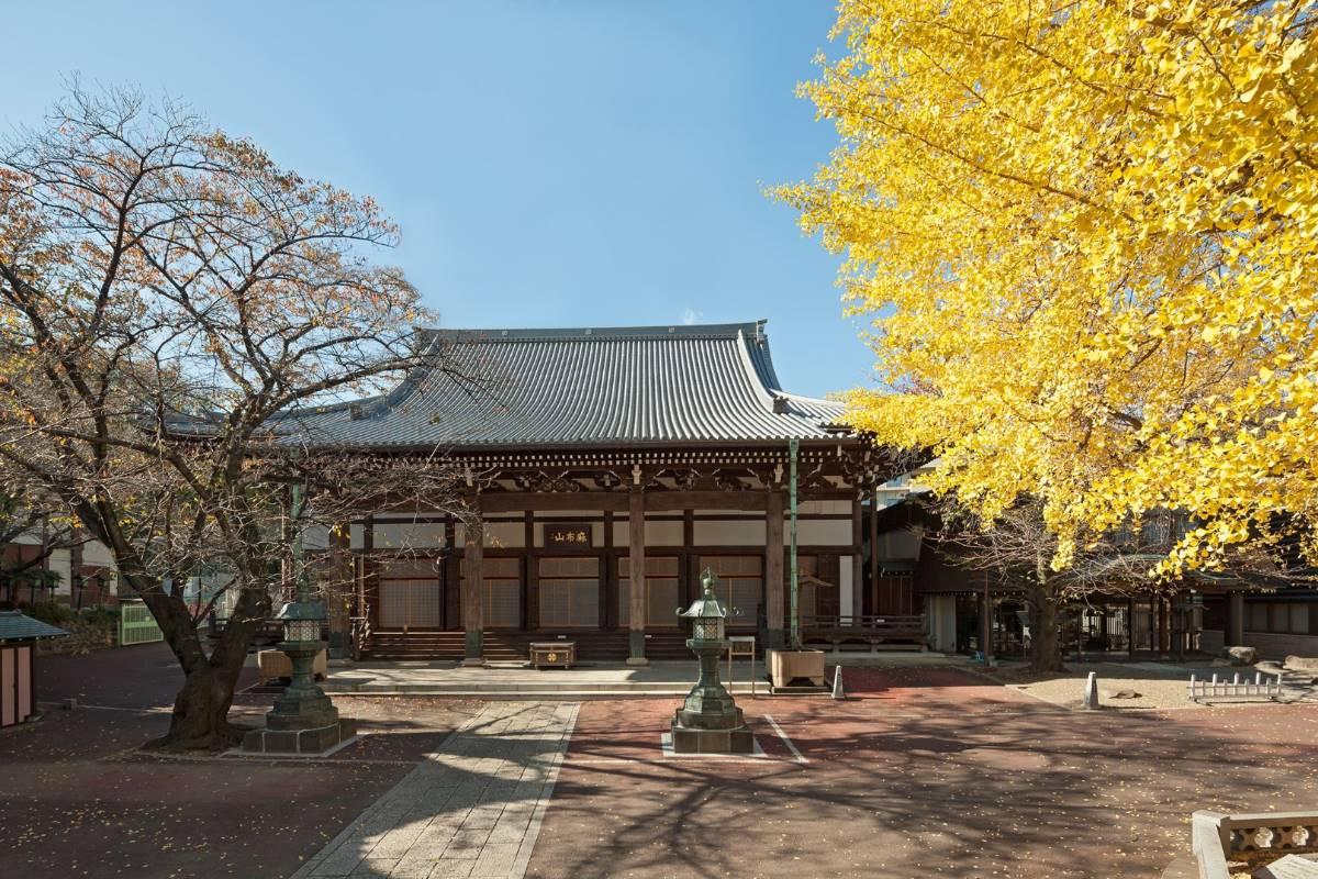 麻布山 善福寺   港区観光協会   VISIT MINATO CITY - 東京都港区の観光情報公式サイト